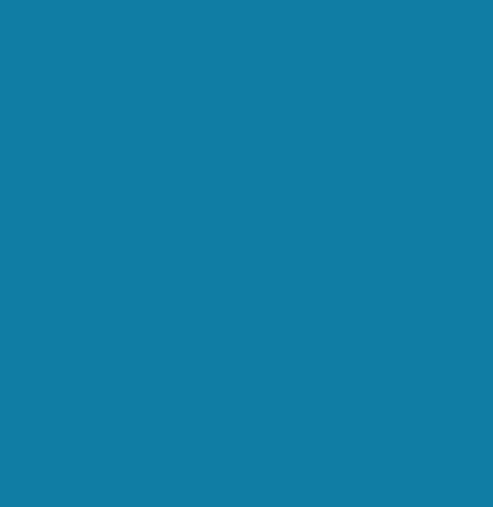 camp-optimization logo