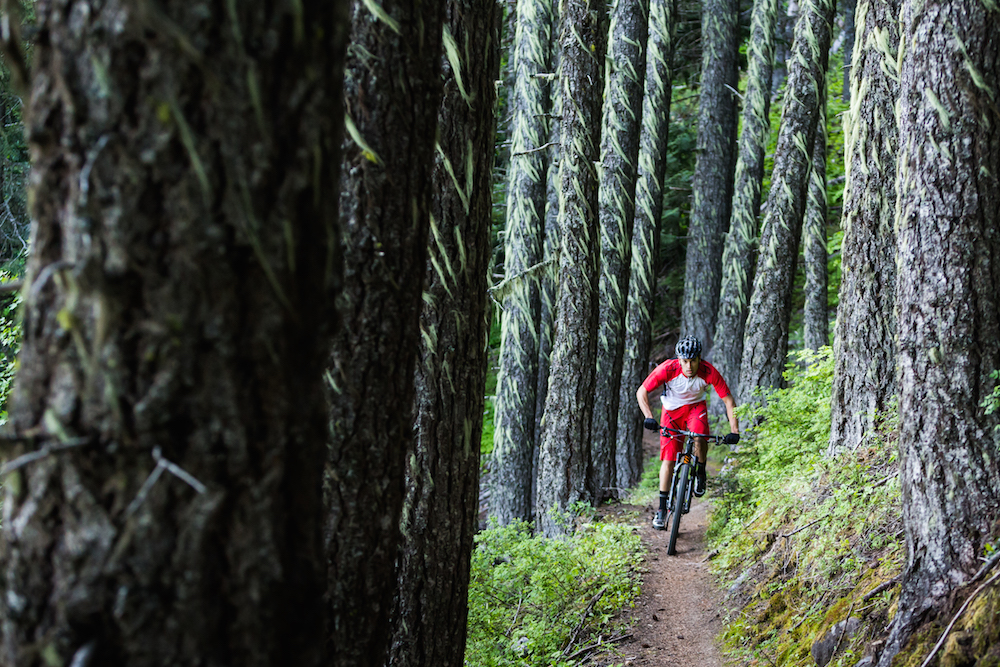 Specialized bike rider in a forest setting